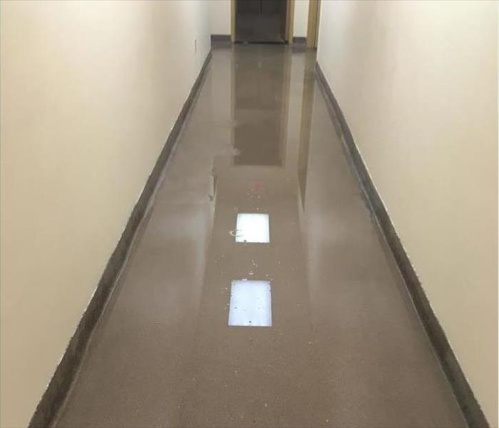 flooded corridor, ceiling lights reflecting off the water